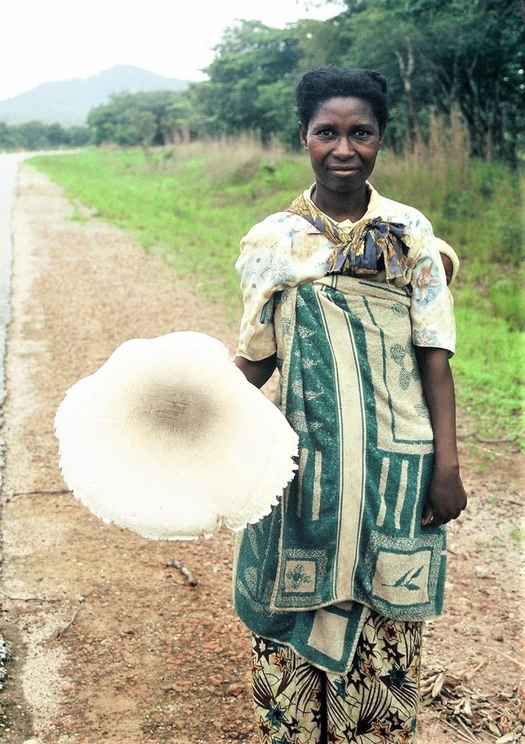 mushroom woman (2)